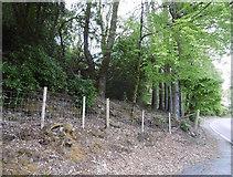 NN1127 : Beside the A85, Lochawe by Richard Webb