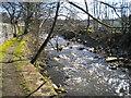 NY7146 : River Nent, Alston by Richard Vince