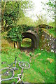 SO0716 : Old railway bridge on the Taff Trail by John Winder