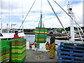 G7176 : Loading crates, Killybegs by Kenneth  Allen