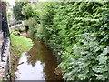 SO3828 : Dulas Brook, Ewyas Harold, Herefordshire by Jeff Gogarty