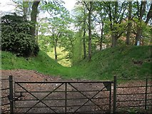 NY6820 : Appleby Castle: outer ditch, looking east by Stephen Craven