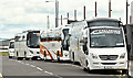 J3575 : Tourist coaches, Titanic Quarter, Belfast (May 2016) by Albert Bridge