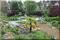 SH6071 : Bog garden improvements - Lady Sybil's Water Garden (2) by Richard Hoare