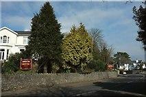 SX9364 : Hotel, Babbacombe Road, Torquay by Derek Harper