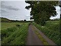 ST5243 : Haymoor Lane, looking east by Rob Purvis