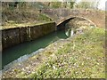 SO8602 : Bridge on the Thames and Severn Canal by Philip Halling