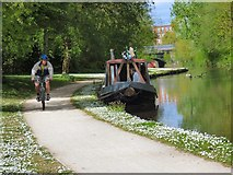 SJ9398 : A scene on the Peak Forest Canal by Gerald England