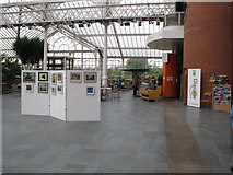 NS6064 : Winter Gardens, with cafe, and art for sale by David Hawgood