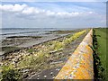 TQ7177 : Sea Wall, near Cliffe Marshes by Chris Whippet