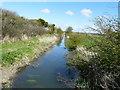 TR3162 : Looking north along Minster Stream by John Baker
