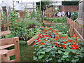 TQ2877 : Allotment, Chelsea Flower Show by Oast House Archive