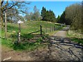 NS5378 : Path to Cuilts Brae by Lairich Rig