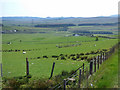 NS3072 : Farmland at Auchentiber Farm by Thomas Nugent
