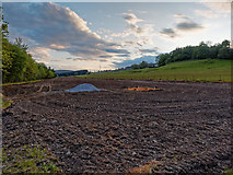 NH5966 : Field above the Black Rock Gorge by valenta