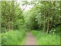 SJ8153 : Merelake Way by Jonathan Hutchins