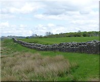 NY6166 : Hadrian's Wall at Birdoswald Roman Fort by Russel Wills