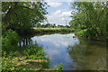 TQ0663 : The River Wey near Weybridge by Alan Hunt