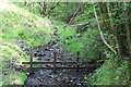 SO1800 : Woodland stream next to Sirhowy Valley Walk by M J Roscoe