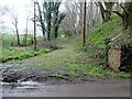 SU9320 : Track by overgrown railway embankment by Peter Holmes