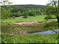 SO5307 : Part of the River Wye / Afon Gwy north of Whitebrook by Jeremy Bolwell
