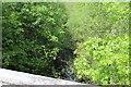 ST1899 : River Sirhowy in woodland near The Rock by M J Roscoe