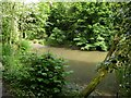 SJ7652 : Barthomley: pond below church by Jonathan Hutchins
