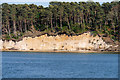 SZ0188 : Brownsea Island, Cliff and Beach near Maryland by David Dixon