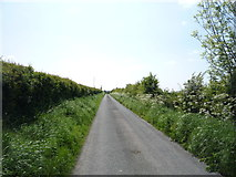 NY1853 : National Cycle Route 72 by JThomas