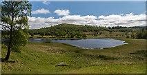 NN6795 : Lochain Uvie by Peter McDermott