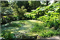 NS0137 : The Pond Garden, Brodick Castle by Billy McCrorie