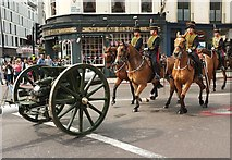 TQ2879 : The King's Troop, Royal Horse Artillery by Palace Mews by Derek Harper