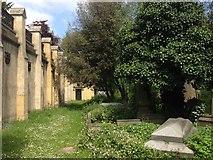TQ2887 : Highgate Cemetery West by Trevor Harris