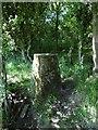 NS4666 : Middle Walkinshaw triangulation pillar by Richard Webb