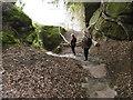 TQ5538 : Descending steps at High Rocks by Marathon