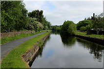 SD8432 : Leeds Liverpool Canal in Burnley (2) by Chris Heaton