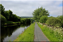 SD8432 : Leeds Liverpool Canal in Burnley (3) by Chris Heaton