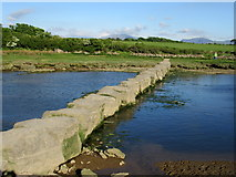 SH4464 : Stepping Stones over Afon Braint by John H Darch