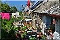 SM9339 : St Gwendaf Cottage, Llanwnda by Deborah Tilley