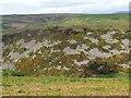 NU0016 : 'Glitters' below Ewe Hill by Andrew Curtis