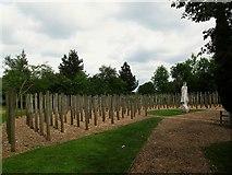 SK1814 : National Memorial Arboretum: Shot at Dawn by Stephen Craven