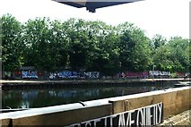 TQ3783 : View of a wall of street art on the River Lea towpath from the Plough Cafe by Robert Lamb