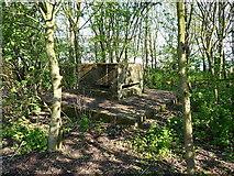 NT3699 : Wartime defences - Methil docks by Richard Law