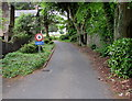 SW6941 : 5 mph speed limit on a hospital entrance road, Redruth by Jaggery