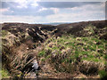 SD9620 : Moorland Stream East of Warland Reservoir by David Dixon
