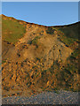 TG1443 : Cliff near Sheringham by Hugh Venables
