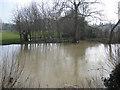 SP2965 : A near flood, River Avon, southeast Warwick by Robin Stott