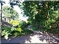 SZ0795 : East Howe: heading to Heather Road on footpath U39 by Chris Downer
