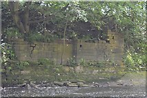 SE2436 : Remains of a Weir, River Aire, Rein Road, Newlay, Leeds by Mark Stevenson