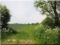 TA1142 : Fields  north  of  Carr  Lane by Martin Dawes